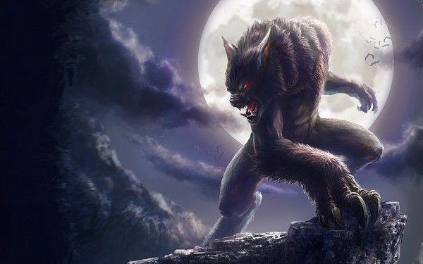 werewolf hd wallpaper 狼男 狼犬 插画