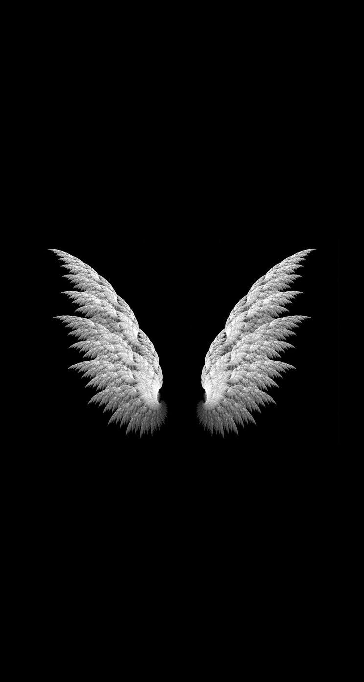 angel wings black background - photo #9