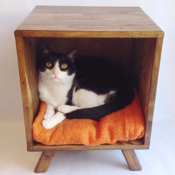 pretty design modern cat bed. Single storage cube  legs cat bed to match my credenza Hmmmm