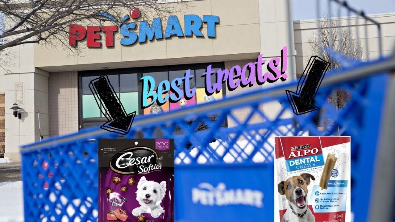 Reviewing Products From Petsmart Pet Store Pets Review Board