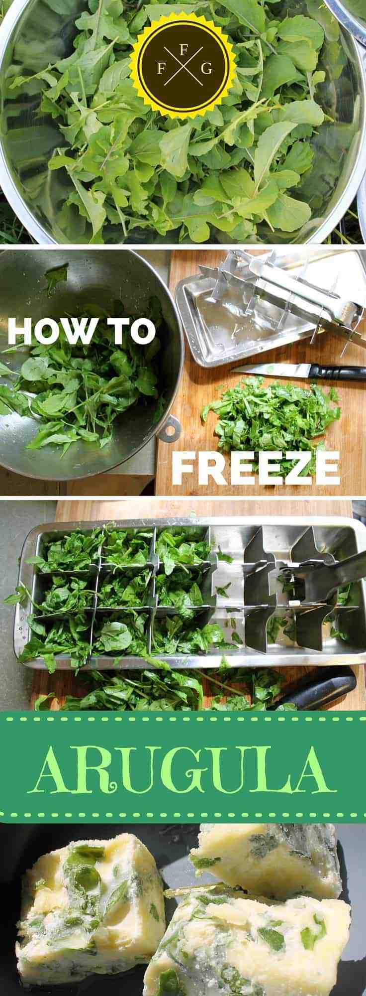 Freeze and Preserve Arugula (Rocket)
