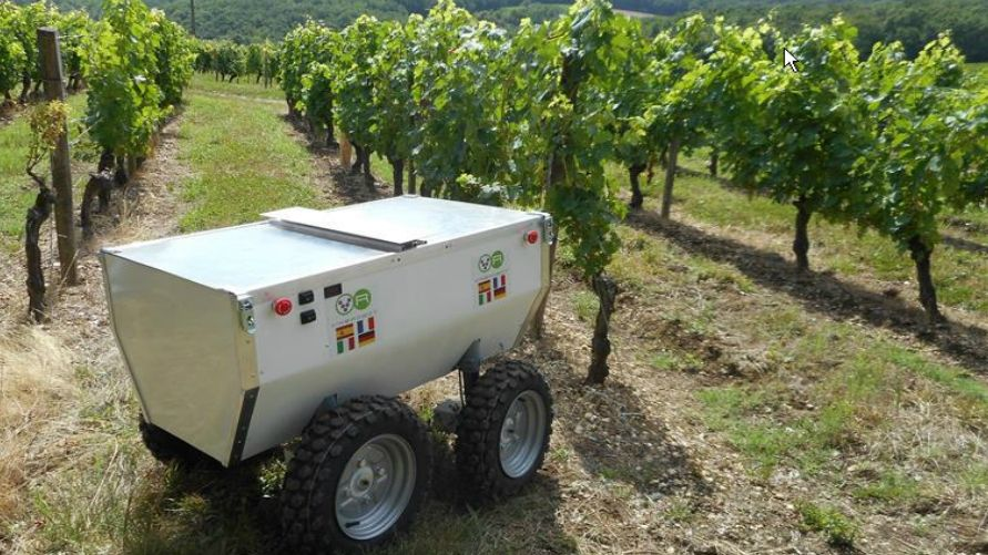 VineRobot: Experts Develop an Automated Vineyard Manager