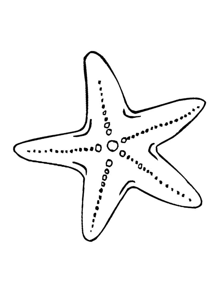 Patrick Starfish Star Coloring Pages Starfish Drawing Animal