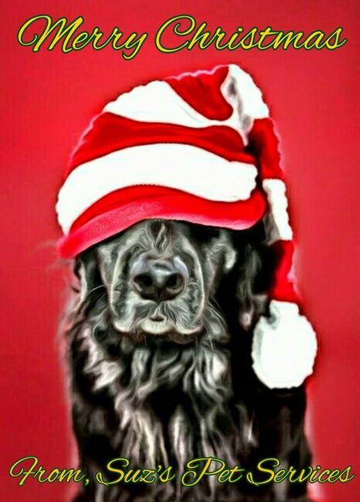 Merry Christmas  - http://ift.tt/1HQJd81