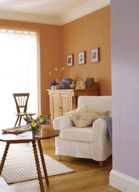 Design Orange Colour Combination Living Room