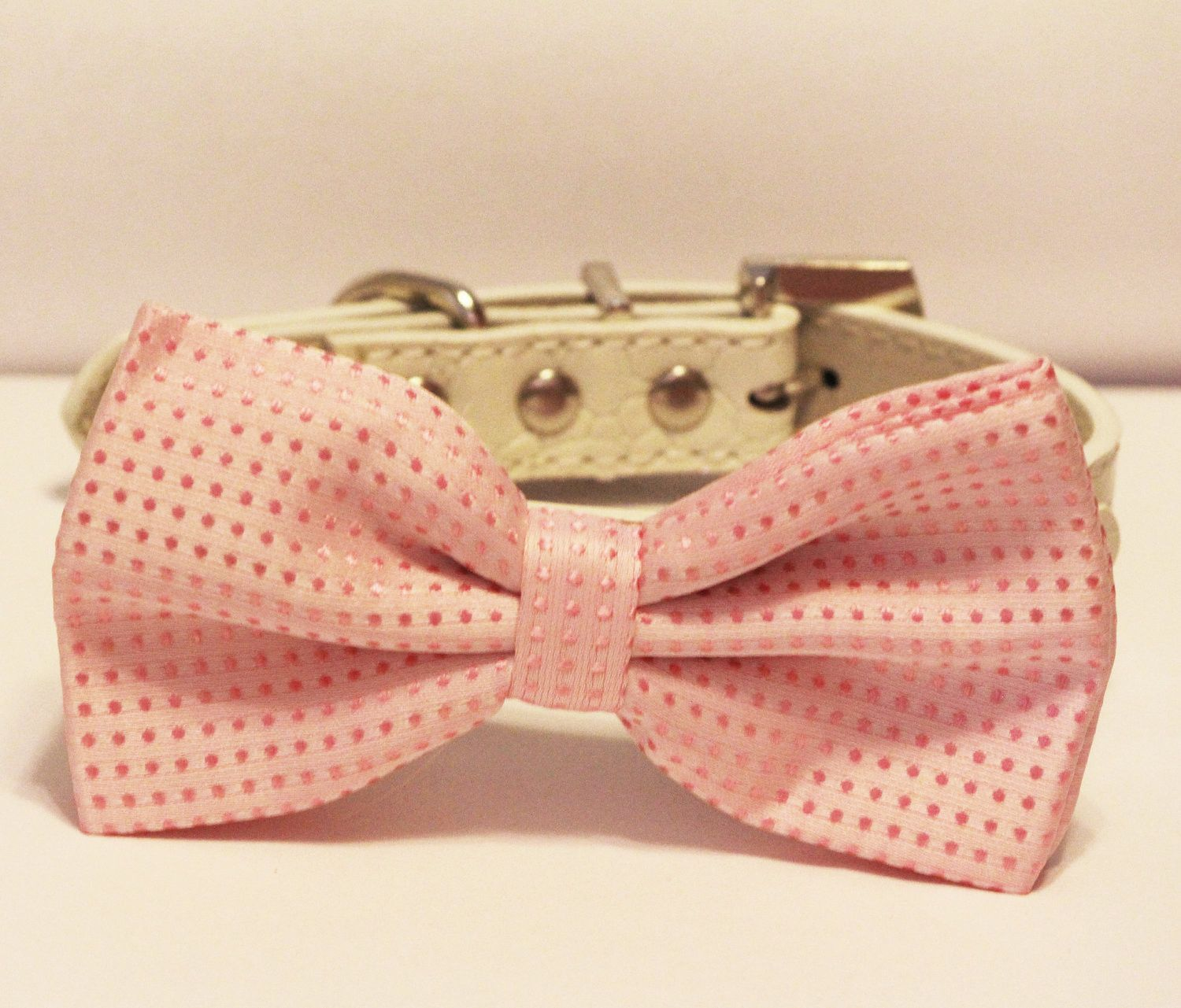 Simple Collar Bow Adorable Dog - 2569e0b44d988dd2ad3c91e96f0c2aff  Graphic_308557  .jpg