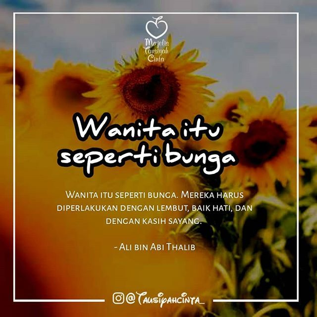 Wanita Itu Seperti Bunga Mereka Harus Diperlakukan Dengan Lembut Baik Hati Dan Dengan Kasih Sayang Ali Bin Abi Thalib Follow Hijrahcinta Follow Hijra