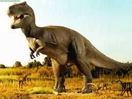 Pin En Tema Dinosaurios Los dibujos de dinosaurios mas bonitos estan aqui! pin en tema dinosaurios