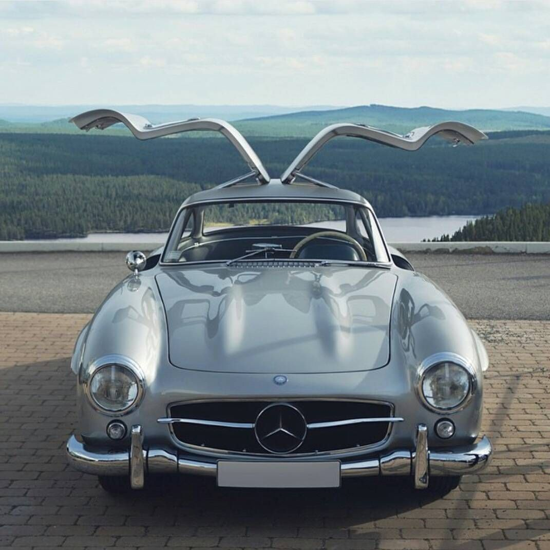 "MadWhips Exotic Performance On Instagram: ""Gullwing"