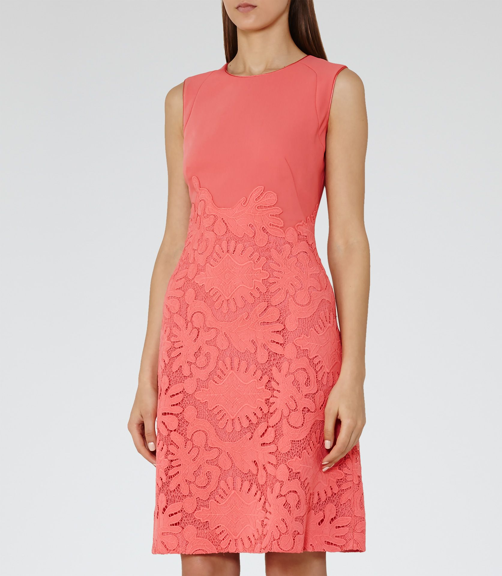 Womens rosebud lace fit and flare dress reiss rebbie favourite