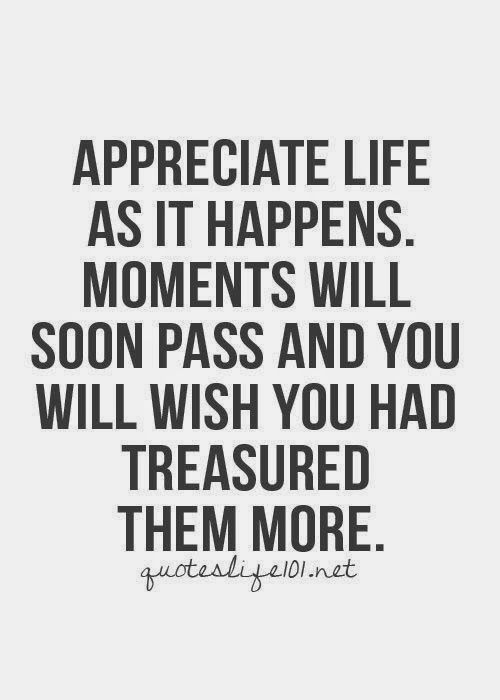 Quotes About Appreciating Life Cool W O N D E R F U L  Life Quotes  Pinterest  Appreciation Thoughts