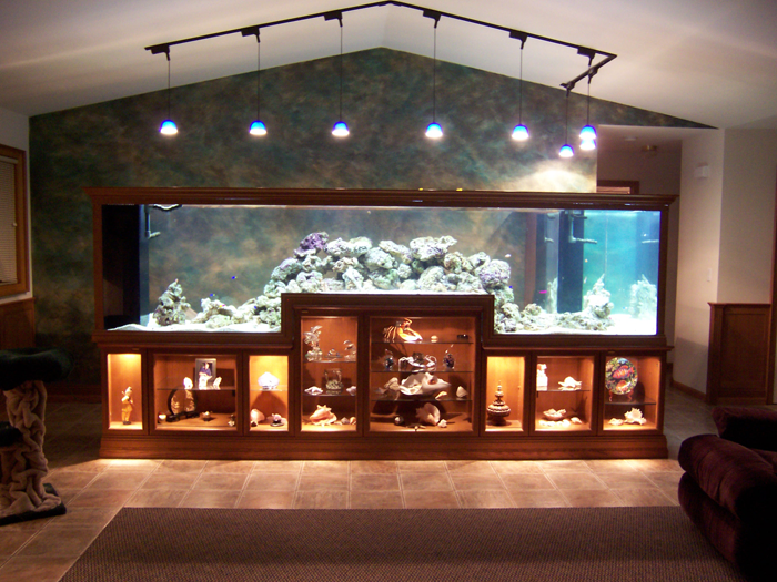 Aquarium incorporated into display case -Acrylic Tank Manufacturing