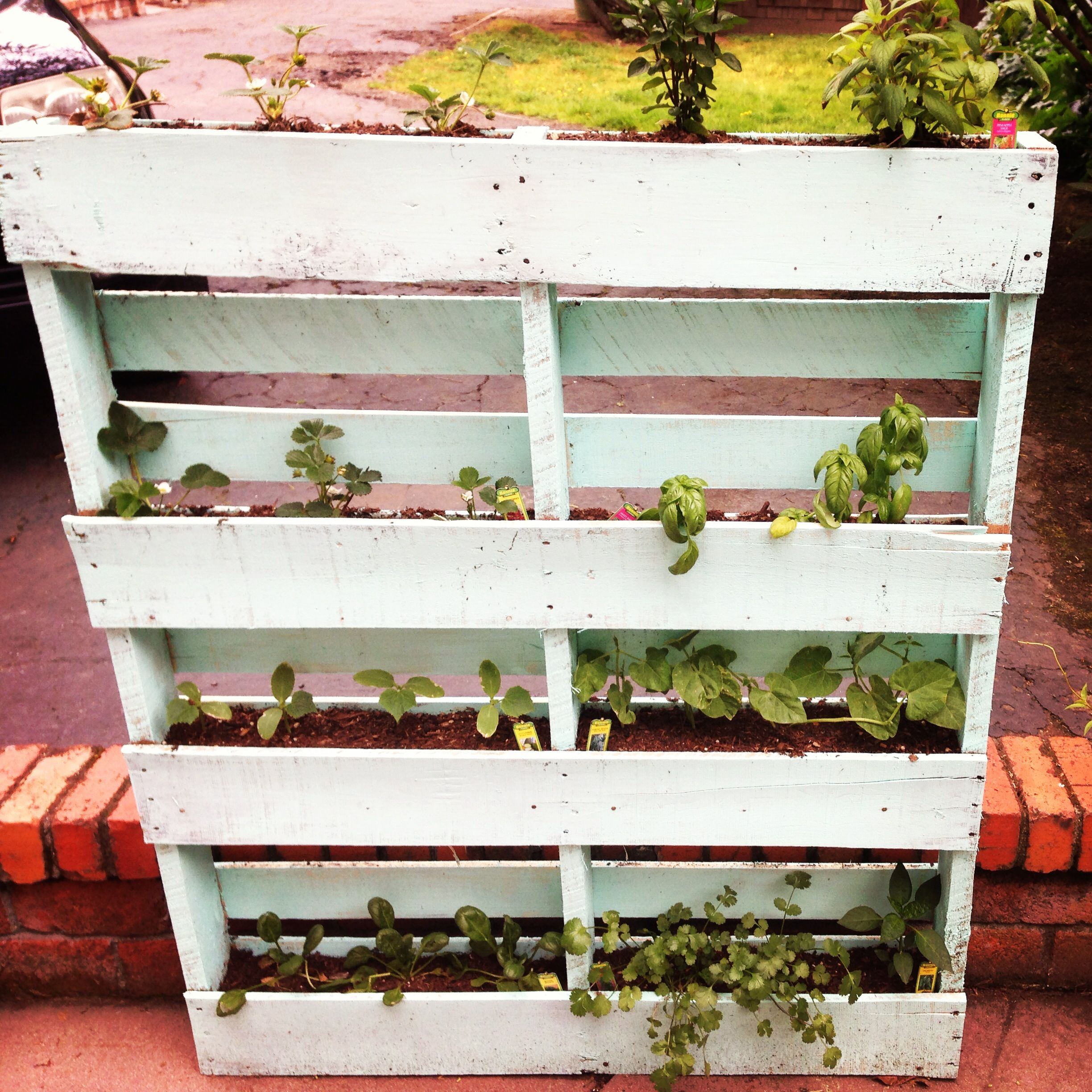 Pallet Herb Box A trip to Home Depot for plants and soil picked up