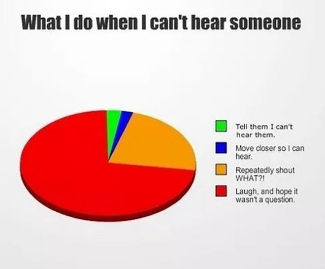 Hilariously Stupid Pie Charts Pie Charts And Memes - Hilariously honest pie charts