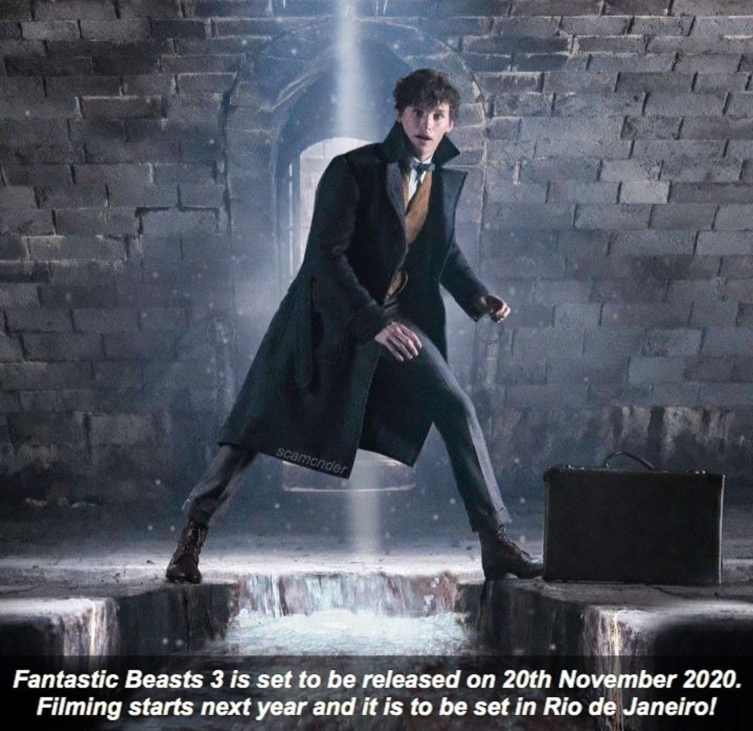 Oh My God Please Be In Rio Fantastic Beasts Movie Harry Potter Fantastic Beasts Fantasic Beasts