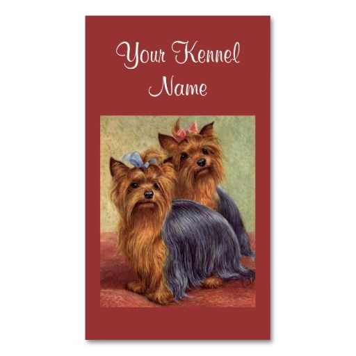 Yorkshire terrier breeder business card yorkshire terrier breeders yorkshire terrier breeder business card reheart Choice Image