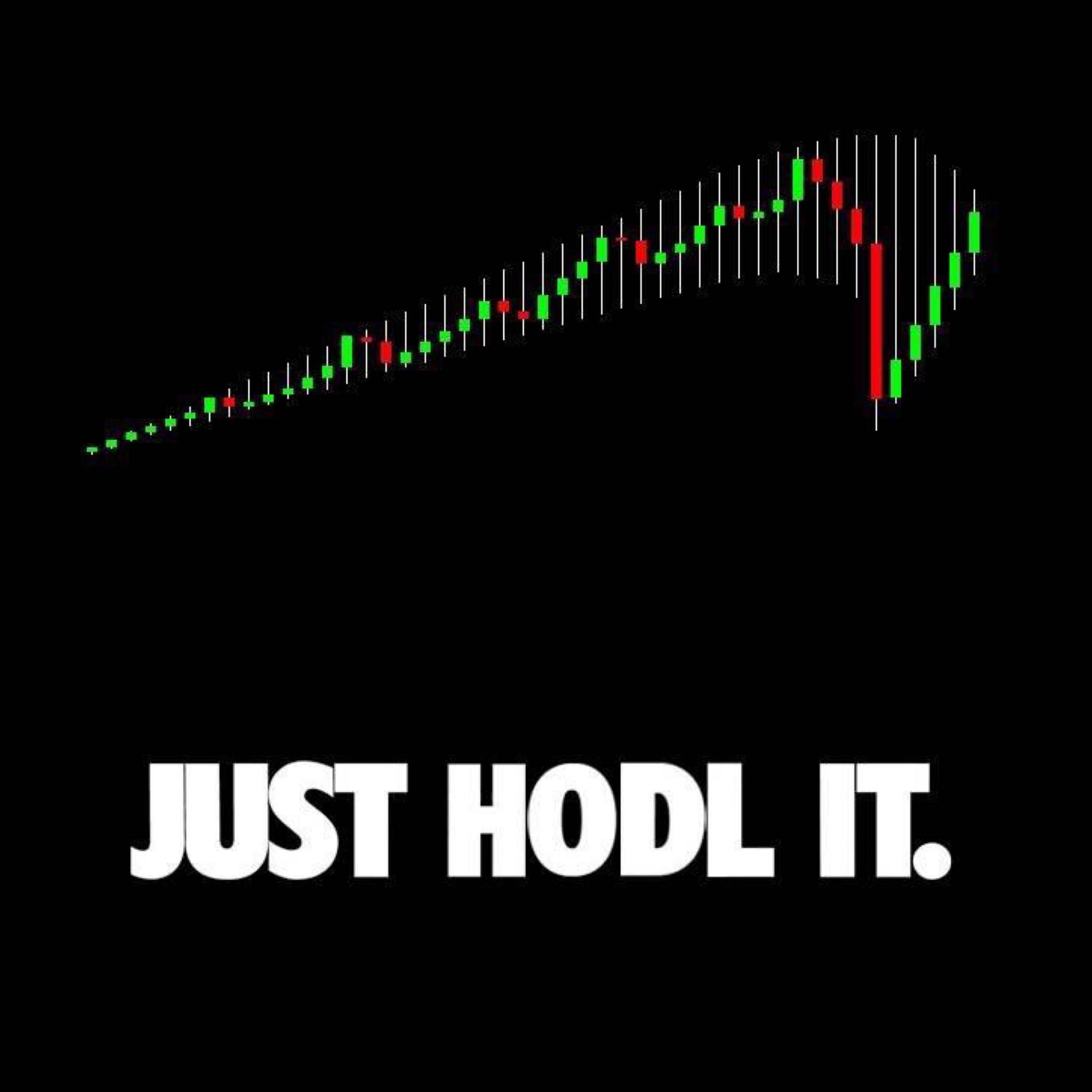 I fixed the Just Hodl It shirt Cryptocurrency, Bitcoin