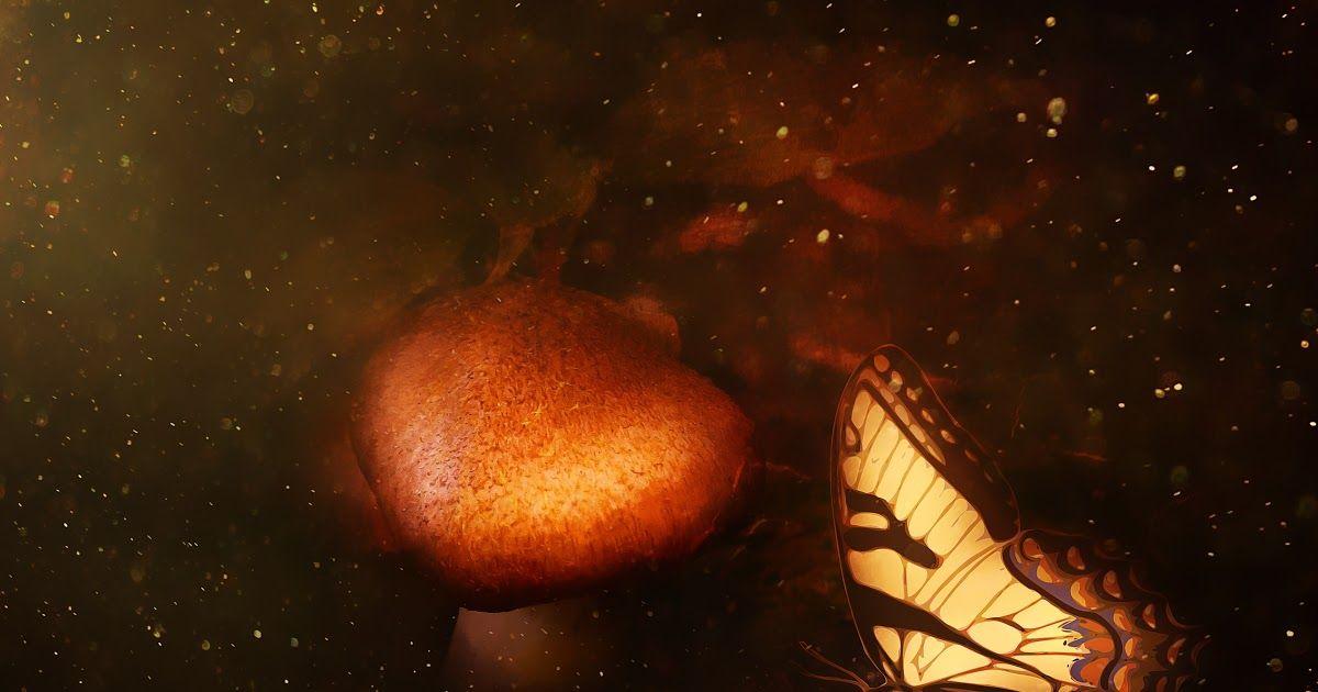 17 Lukisan Pemandangan Alam Semesta Gambar Malam Sinar Matahari Bintang Ruang Coklat Download 99 Lukisan Sketsa Gambar Pem Di 2020 Pemandangan Tiongkok Kuno Lukisan