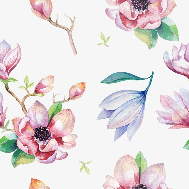 Flower Print Flower Clipart Plant Watercolor Flowers Png Transparent Clipart Image And Psd File For Free Download Flower Drawing Flower Clipart Watercolor Flowers