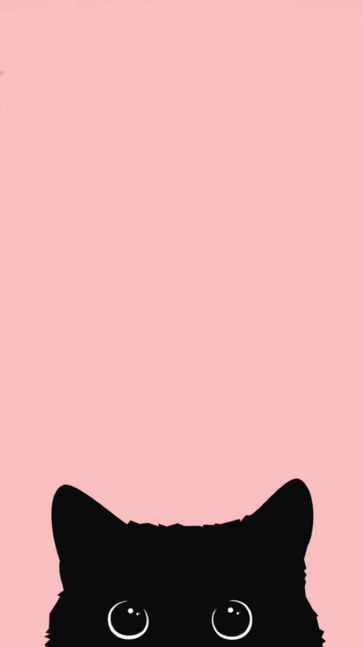 Download Cool Black Background For Iphone Today In 2020 Cute Cat