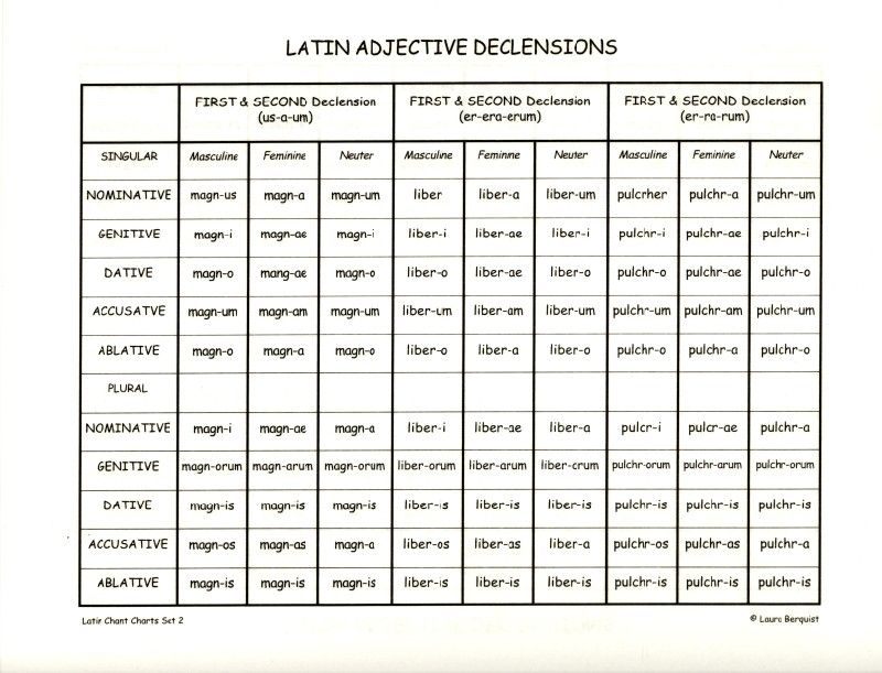 1st Declension Latin Endings Google Search Classical
