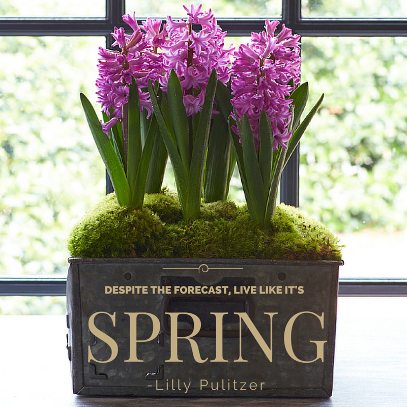 Happy First Day Of Spring spring spring quotes happy
