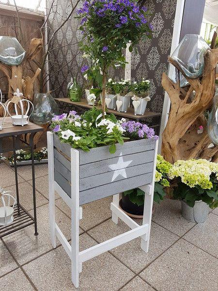 Vintage Blumentopfe Hochbeet Holzkiste Grau Mit Weissem Stern 90