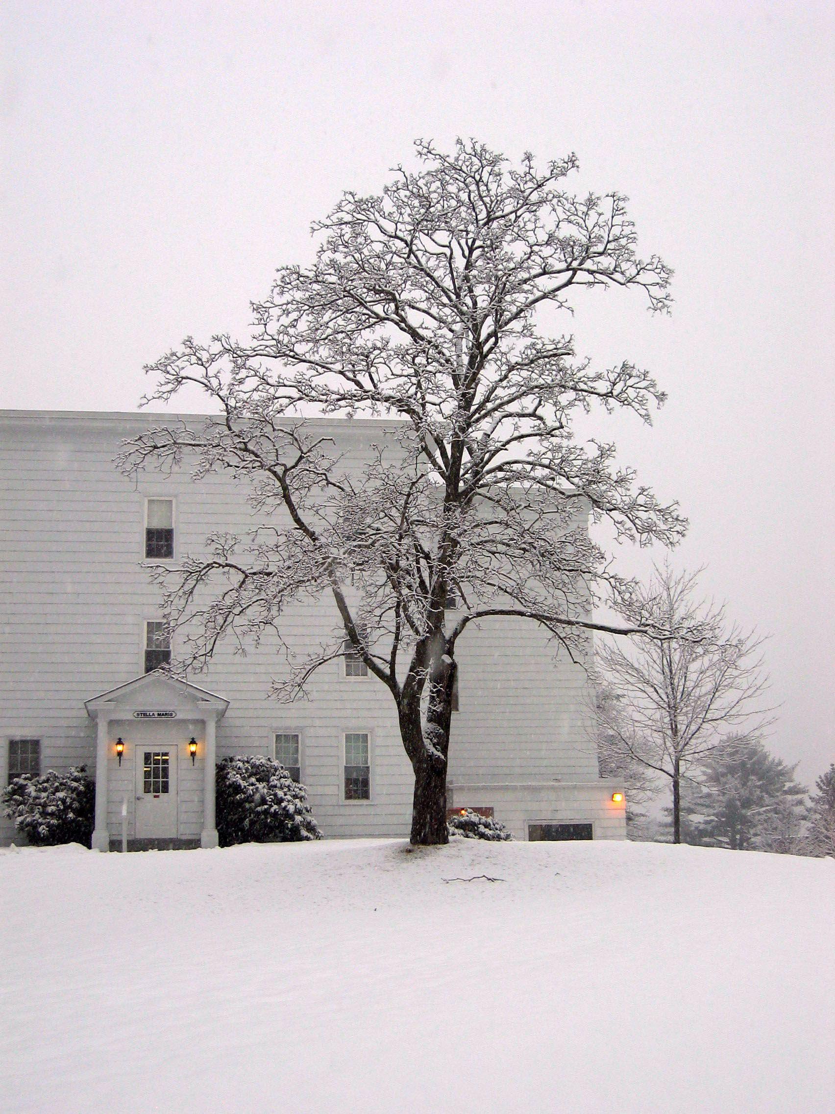 Stella Maris Hall Une Biddeford Maine Photo By Stephen A Smith Maine Vacation Biddeford Maine Maine