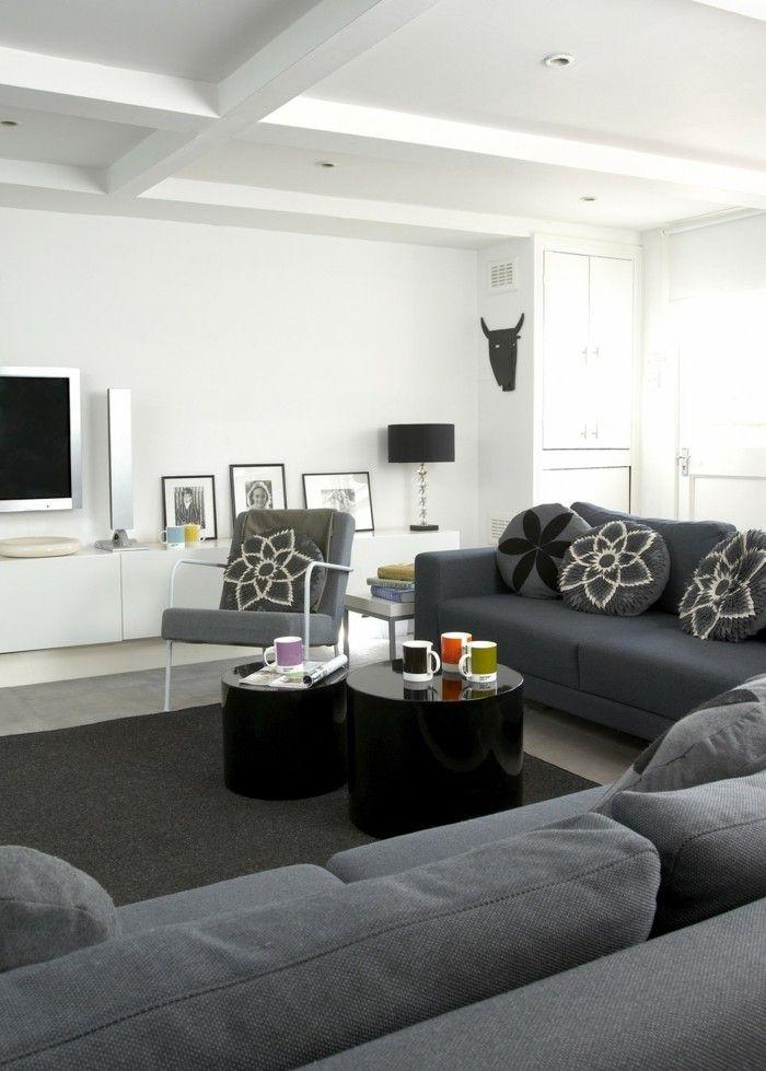 graues wohnzimmersofa farbideen wohnzimmer Ev Pinterest