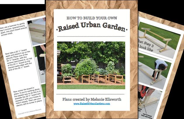Raised Urban Garden Plans