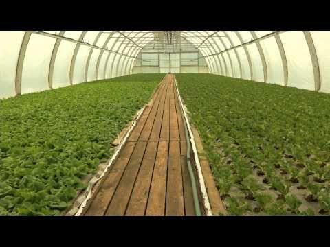 Unelmien puutarha - Husulan Puutarha Paimelassa -video