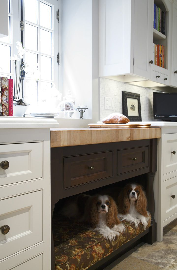 Guelph Century Home Under Counter Dog Bed Built In Dog Bed Dog Spaces Dog Bed Storage