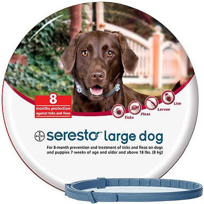 Seresto Foresto Bayer Flea&Tick Collar 70cm Large Dogs OVER 8kg 18LBS  https://t.co/f1wBeelBRi https://t.co/5qFUgaGqlr