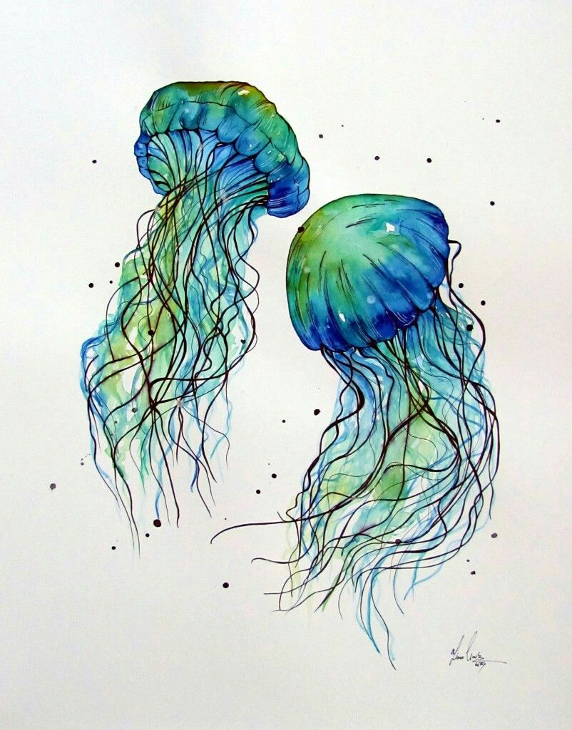 7e743c182 Fiona-Clarke Jellyfish Drawing, Watercolor Jellyfish, Jellyfish Tattoo, Jellyfish  Art, Watercolor