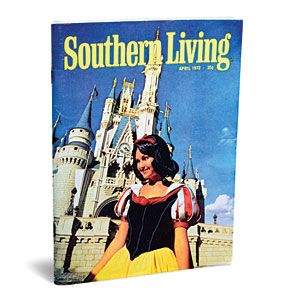 Walt Disney World Vacation Planning: Expert Tips, Tricks & Ideas | Leave the hard stuff to a (free!) travel agent | SouthernLiving.com