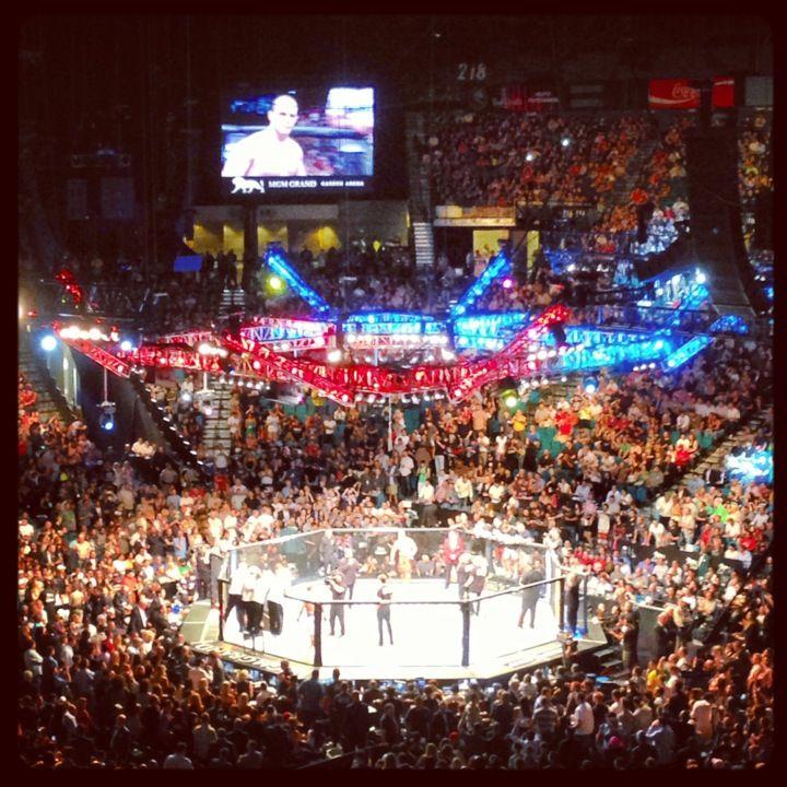 Mgm Grand Garden Arena Mgm Grand Garden Arena Mgm Ufc Fight Card