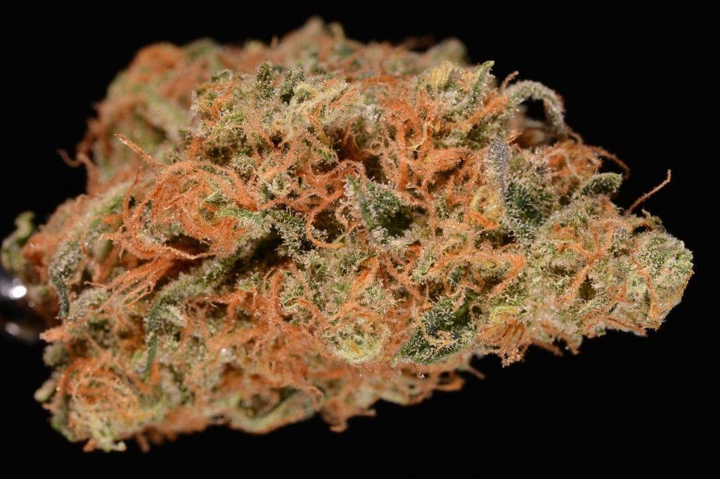 Agent Orange (marijuana review)