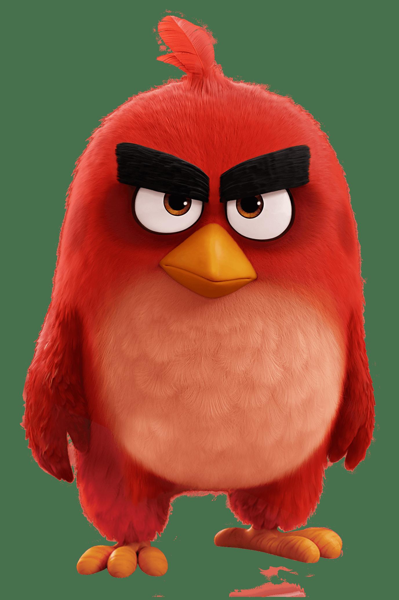 Angry Birds Movie Red Bird Angry Birds Movie Angry Birds Movie Red Angry Birds Characters
