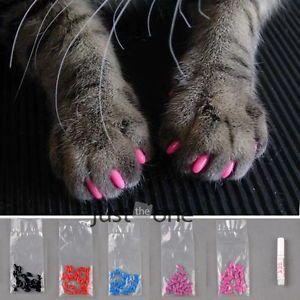 Fake nails for cats,so wrong!