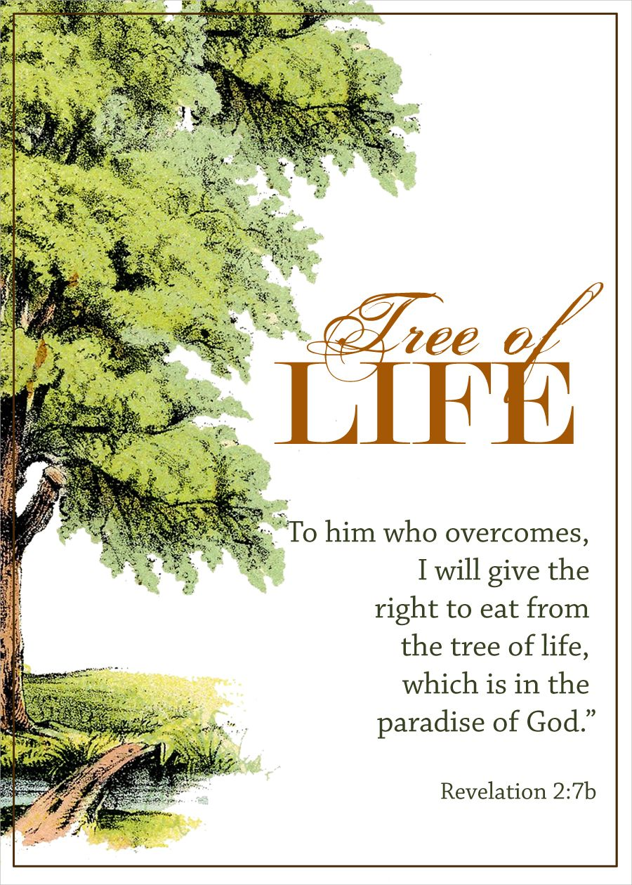 """Tree Of Life Quote Revelation 27B """"to Him Who Overcomes I Will Give The Right To"""