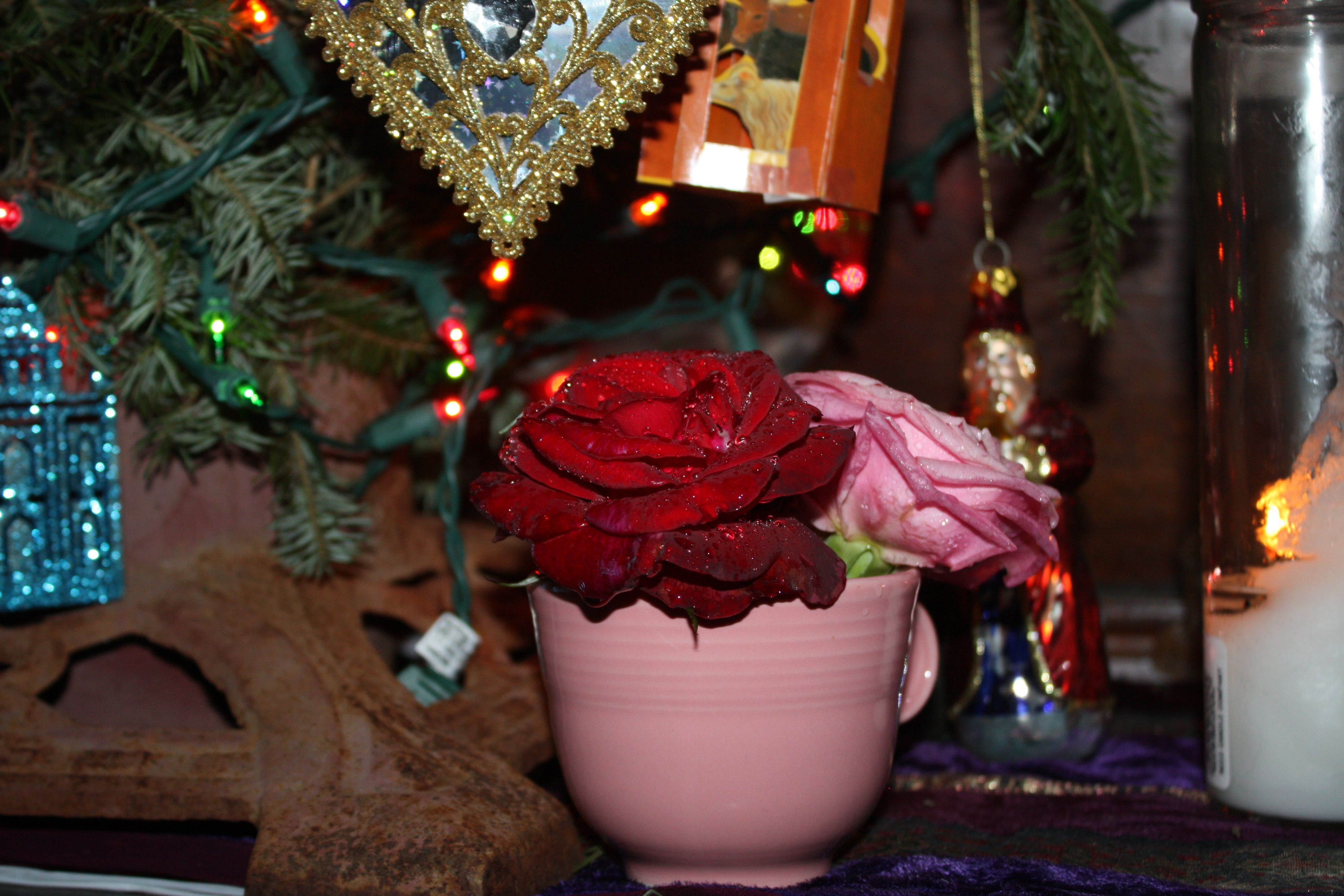 Home for the Holidays: a reflection on the Octave of Christmas | My ...