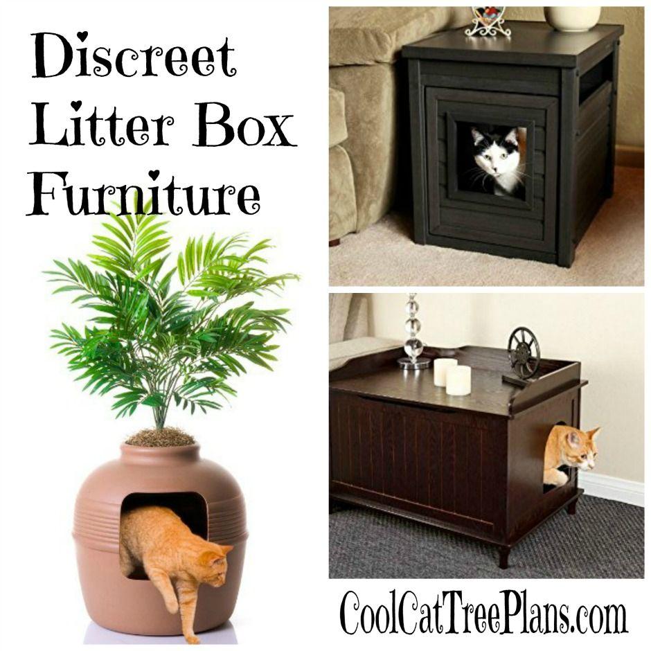 33+ Discreet cat litter box trends