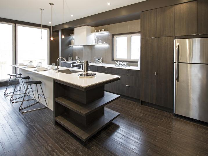 Aya Kitchens Canadian Kitchen And Bath Cabinetry Manufacturer Kitchen Design Professionals Tribe Professional Kitchen Design Kitchen Design Urban Kitchen