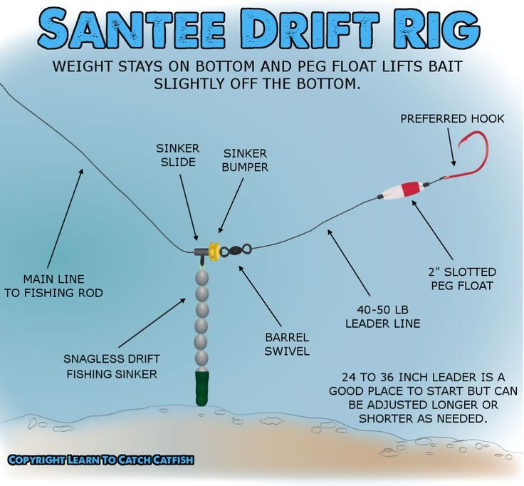 Rig for catfish fishing pinterest catfish rigs and fish for Best bottom fishing rigs