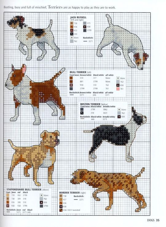 ENGLISH BULL TERRIER dog counted cross stitch kit