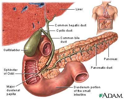 Gallstones - Topic Overview  Gallstones and Gallbladder Disease - Prevention  http://www.healthcentral.com/ency/408/guides/000010_5.html   Risk Factors in Women  (HRT) doubles or triples the risk for gallstones, hospitalization for gallbladder disease, or gallbladder surgery. Estrogen raises triglycerides, a fatty substance that increases the risk for cholesterol stones.  http://www.healthcentral.com/ency/408/guides/000010_4.html