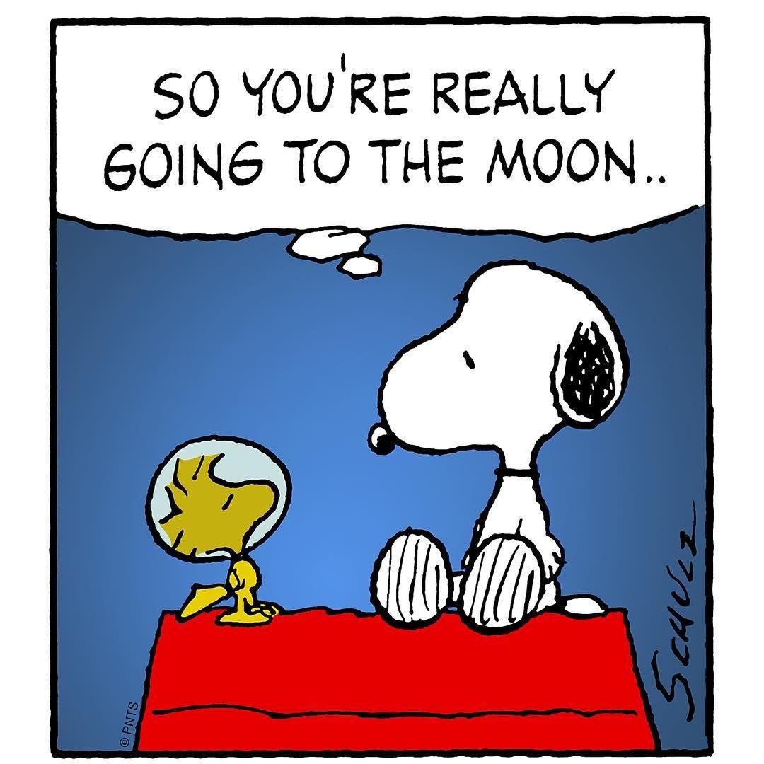 """Reach for the stars... "" Snoopy, Ilustraciones"