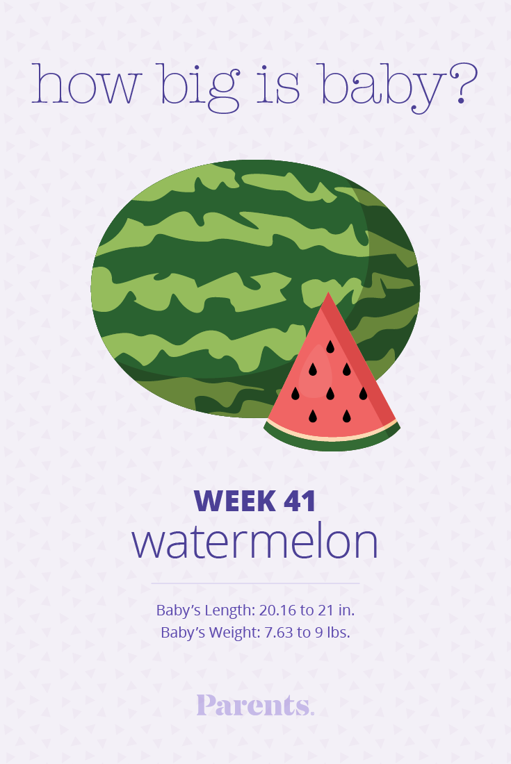 Can pregnant watermelon in late 11