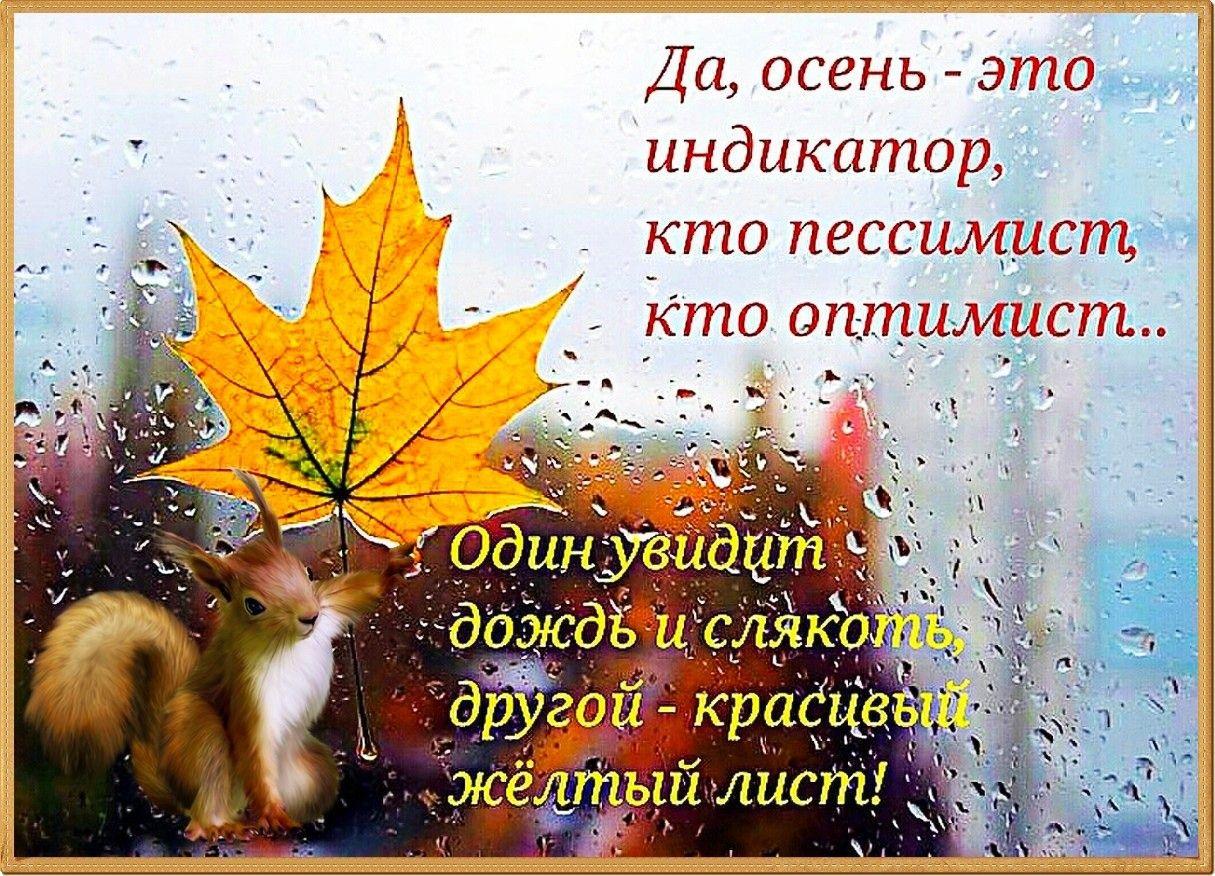 Смешные стихи про осень с картинками, первой