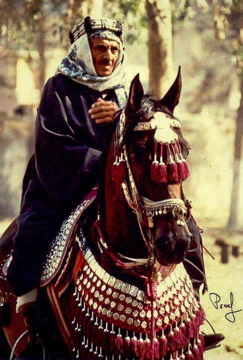 Egypthorse.com